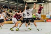 Derbytime! TV Groß-Umstadt gegen HSG Nieder-Roden, 31.01.2015
