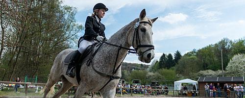Vereinsvergleichswettkampf des Reitvereins Vorderer Odenwald 2014